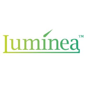 Luminea Wandfluter mit Solarbetrieb