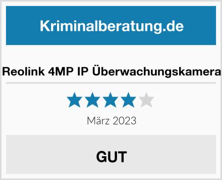 Reolink 4MP IP Überwachungskamera Test