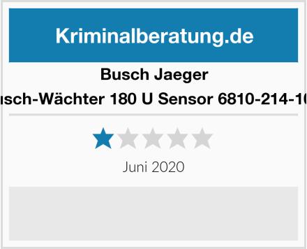 Busch-Jäger Busch-Wächter 180 U Sensor 6810-214-101  Test