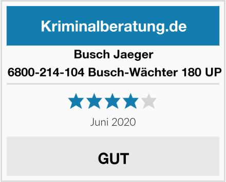 Busch-Jäger  6800-214-104 Busch-Wächter 180 UP Test