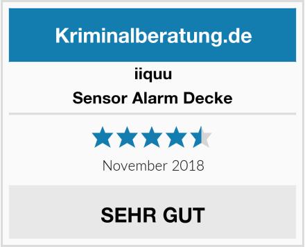 iiquu Sensor Alarm Decke Test